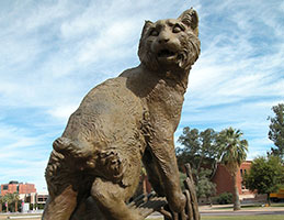 Photo of the Wildcat sculpture. Link to Gifts by Will.